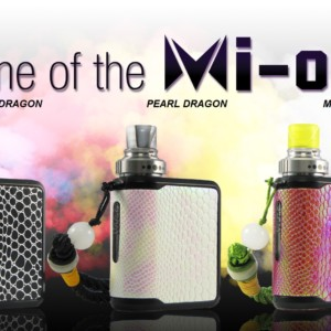 MI-ONE-DRAGON